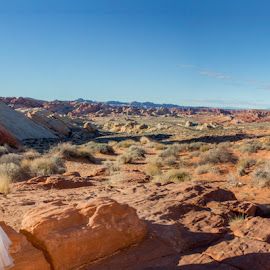 in the desert by Lucas Strawhorn - Wedding Bride & Groom ( desert, wedding, bride, rocks, groom )