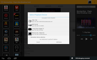 Screenshot of PlayTo Roku/Chromecast/DLNA TV