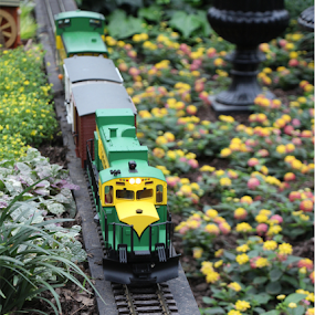 PWC107: Toy Challenge-Trains by Michael Lunn - Artistic Objects Toys ( pwc107, train, toy challenge, toy, object )