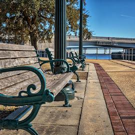 New Bern Waterfront by Carol Plummer - City,  Street & Park  City Parks