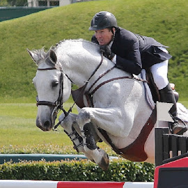 Partners by Lena Arkell - Animals Horses ( rider, calgary, spruce meadows, show jumping, jump )