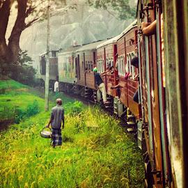 Trains in Sri Lanka by Sheeyam Shellvacumar - Transportation Trains ( srilanka, transportation, photography, trains )