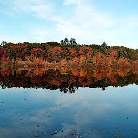 Devonwood Lake. Farmington, CT by Dmitriy Tucker - Nature Up Close Water