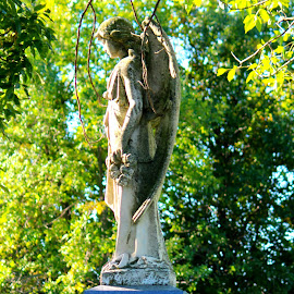 by Sheila Werth - Buildings & Architecture Statues & Monuments ( sept 16 )