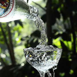 Gin Garden by Zandro Sotto - Food & Drink Alcohol & Drinks (  )