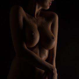 N by Tatjana GR0B - Nudes & Boudoir Artistic Nude