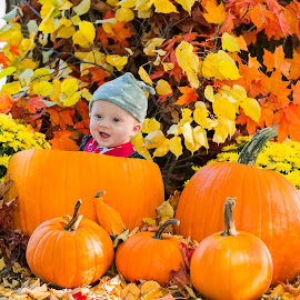 The Great Pumpkin by Michael Wolfe - Babies & Children Child Portraits ( child, fall, pumpkins, baby, leaves, portrait, kid,  )