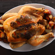 Truffle-Roasted Chicken