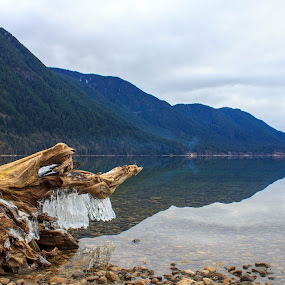 Winter Beach by Devin Rieger - Landscapes Beaches ( alouette, mountains, winter, canada, green, ice, lake, beach, rocks )