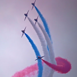 Red Arrows by Dave Hudson - Transportation Airplanes