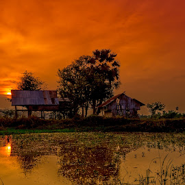 Rural Dusk in Laos by Pavel Aberle - Landscapes Sunsets & Sunrises ( laos, seasia, southern laos, dusk, rural, don kong, village, sunset, 4000 islands, d7000, mekong, lao, nikon )