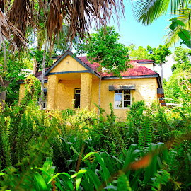 Paronella Park by Tommy Miura - Buildings & Architecture Homes ( green, australia, house, travel, historical, rainforest,  )