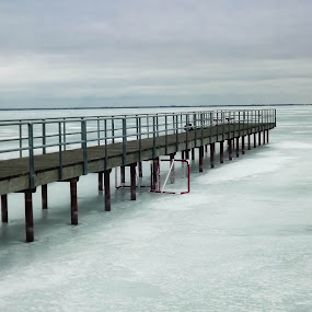 Desolation by Colleen Legree - Landscapes Waterscapes ( water, desolate, ice, snow, pier, frozen, landscape, river )