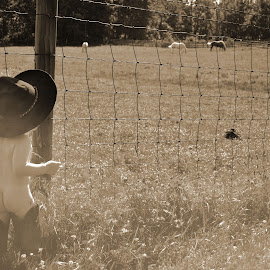 cowboy baby by Brittany VanTienen - Babies & Children Child Portraits ( farm, cowboy, horses, baby, photography )