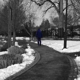 Lone Walker by Lorraine D.  Heaney - City,  Street & Park  Street Scenes