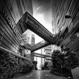 Matrix DNA Chain by Chester Chen - Buildings & Architecture Bridges & Suspended Structures ( blackandwhite, reflection, black and white, buildings, long exposure, bridges, singapore )
