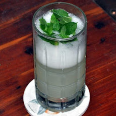 Iced Mint and Cucumber Gin