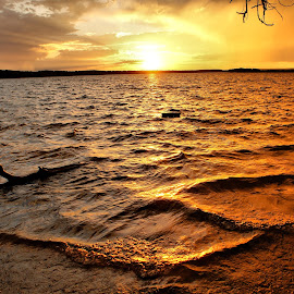 Ripples by Judy Pics - Landscapes Waterscapes ( water, ripples, waves, sunset, lake, glow, golden )