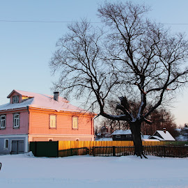 Dacha, Suzdal, Russia by João Branquinho - Buildings & Architecture Homes ( winter, russia, dacha, snow, suzdal )