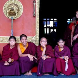 Refugee monks from Tibet  by Akhil Munjal - People Street & Candids ( religion, monk, buddhist, tibet )