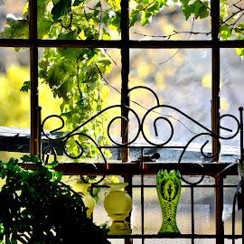 Window of Green by Erin Czech - Artistic Objects Glass ( vase, window, vine, glassware, salvage business )