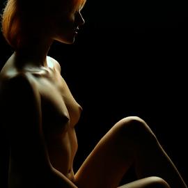 Shadows by Vineet Johri - Nudes & Boudoir Artistic Nude ( nude girl, art nude, vkumar photography, kittie, body shape, curves, shadows )