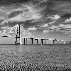 Ponte Vasco da Gama by Julio Cardoso - Buildings & Architecture Bridges & Suspended Structures ( tagus river, lisbon, bridge )