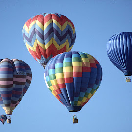 Hot air Balloons by Walter Carlson - Transportation Other ( red, sky, green, colors, albuquerque, b lue, hot air balloonc,  )