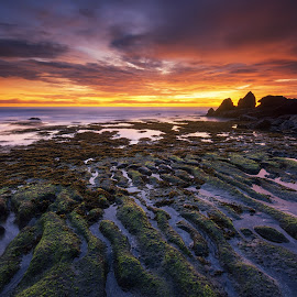 Batu Mejan Beach Sunset by Eggy Sayoga - Landscapes Beaches ( bali, reef, indonesia, sunset, moss, rock )