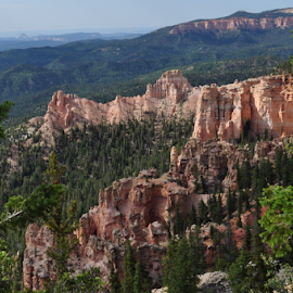 by Steven Calhoun - Landscapes Caves & Formations ( forests, national park, natural rock formations, landscapes, bryce canyon )