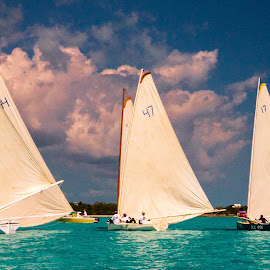 Exuma Regatta - 9894 by John Covin - Transportation Boats ( clouds, sailboats, exuma, sailboat racing,  )