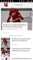 Screenshot of MLive.com: Red Wings News