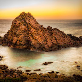 Sugarloaf Rock by Ron McGrechan - Landscapes Beaches ( water, indian ocean, sugarloaf rock, beach, rocks )