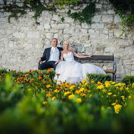 among flowers by Ivan Tuta - Wedding Bride & Groom ( wedding photography, wedding dress, wedding photographer, bride )