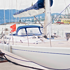 Skipper by Andrea Riccobene - Sports & Fitness Watersports