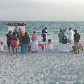 Wedding on the beach...nice. by Phyllis Keefe Lee - Wedding Ceremony