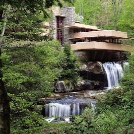 by Jeff Schartz - Buildings & Architecture Homes