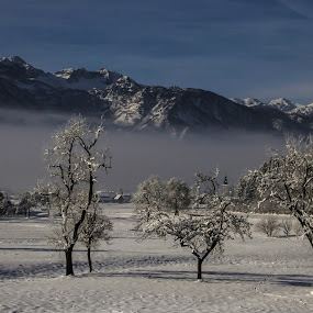 Apples! by Jože Borišek - Landscapes Starscapes ( bohinj-slovenia )