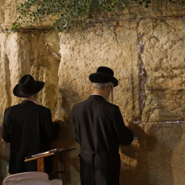 Jews praying at the Western Wall by Yeshaya Dinerstein - People Group/Corporate ( jerusalem, praying, holy, holy places, israel, holy land, jews )