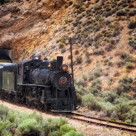 Nevada Northern #40 by David Homen - Transportation Trains