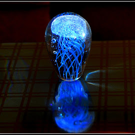 Fossilised by Prasanta Das - Artistic Objects Glass ( glass, artistic, fossilized, jellyfish )