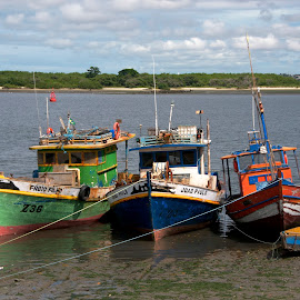 boats in the river by Francisco Diniz - Transportation Boats