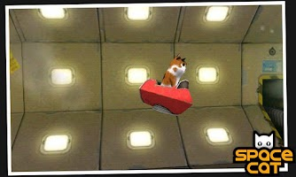 Screenshot of SpaceCat (3D)