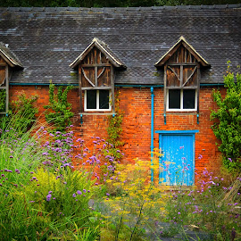 Old House by Grace Parry - Buildings & Architecture Decaying & Abandoned ( house )