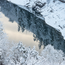Reflections in the Snow by Drew Campbell - Landscapes Weather