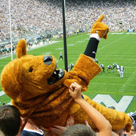Penn State Nittany Lion by Britney Elsbury - Sports & Fitness American and Canadian football