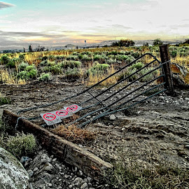 Stolen Access by Helen Jamison - Instagram & Mobile Android ( fence, hdr, keep out, beautiful, tumbleweeds, no trespassing, gate )