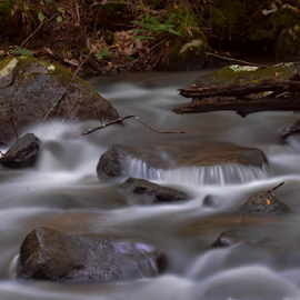 Smooth Waters by Janet Lyle - Landscapes Waterscapes ( water, stream, falls, river )