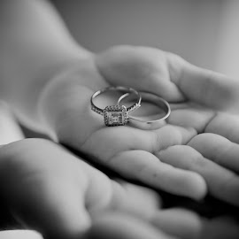 Will You Marry Me? by Irwan Budiarto - Wedding Other ( ring, wedding, cermemony,  )