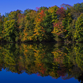 Reservoir in Wayland. Oh why do the leaves have to fall? by Judy Smithcronk - Novices Only Landscapes ( fall, color, colorful, nature )